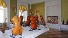 Kiállítás a Károlyi Kastélyban_13