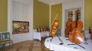 Kiállítás a Károlyi Kastélyban_3
